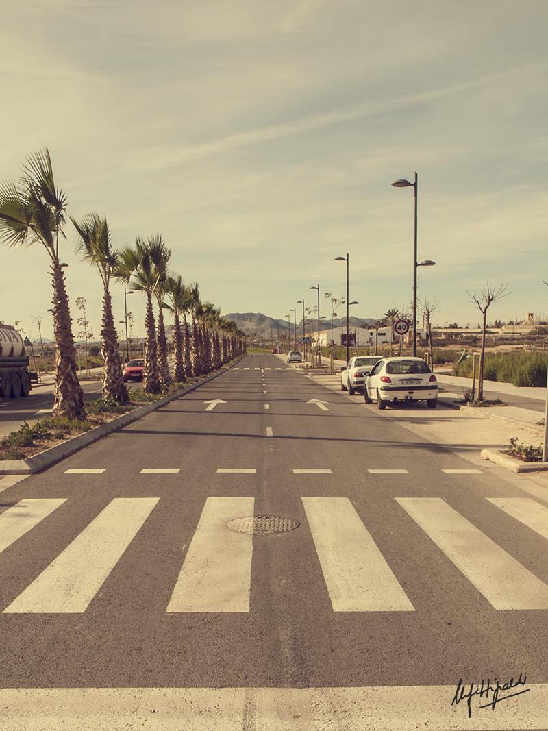Mercedes Fittipaldi - Las líneas